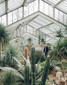 Cactus Aesthetic 2