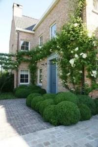 Magnolia House Garden 2