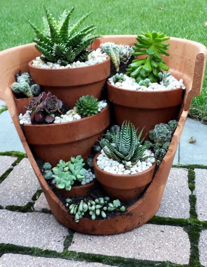 Cactus Landscaping 20