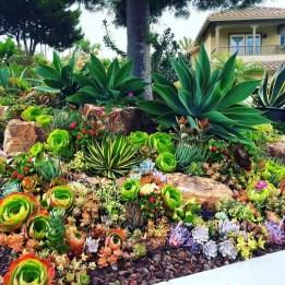 Succulent Design 13