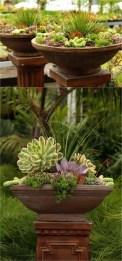 Succulent Design 17