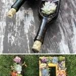 Succulent Design 23