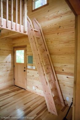 Tree House 17