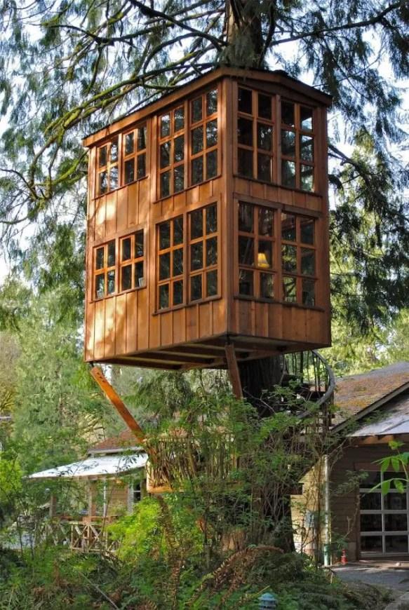 Tree House 9
