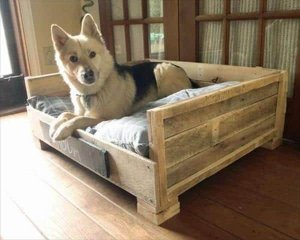 Pallet Dog Beds 8
