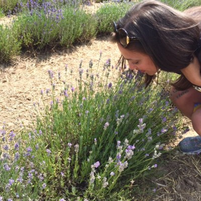Smelling Lavender | Decorchick!®