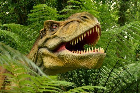 Animatronic Dinosaur Park 47