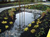 Beautiful Gardens Ideas
