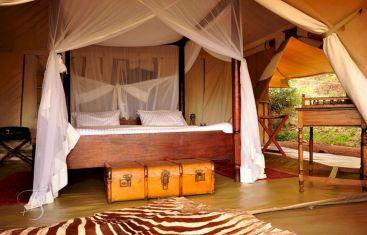 Camp Safari Bedroom