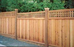 Cedar Privacy Fence Ideas