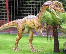 Combe Martin Dinosaur Park 43