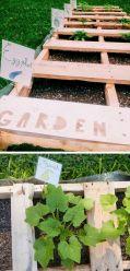 DIY Backyard Ideas On A Budget That Are Superb Genius No 03