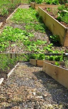 DIY Backyard Ideas On A Budget That Are Superb Genius No 43