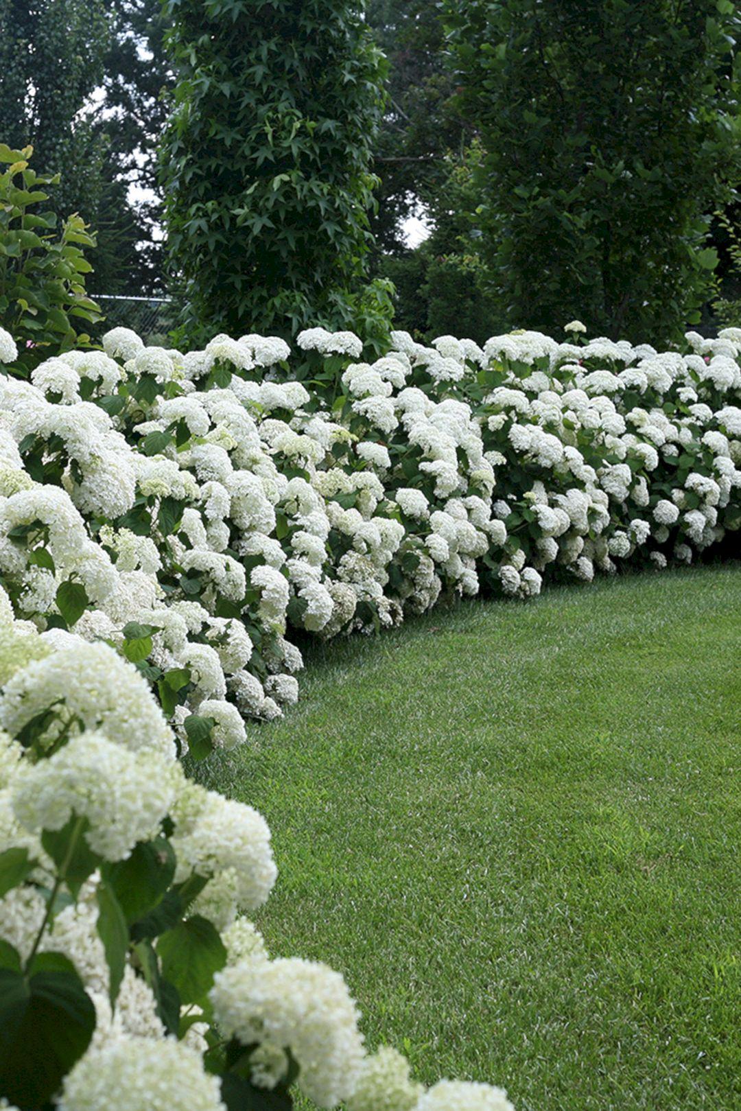 Designing a Garden With Landscape Design Principles 30 ...