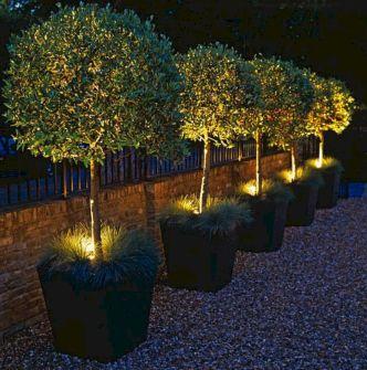 Designing a Garden With Landscape Design Principles 38