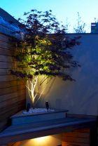 Designing a Garden With Landscape Design Principles 8