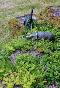 Dinosaur Garden Ideas 40