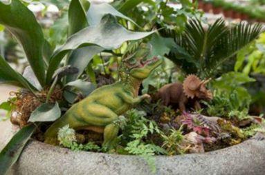 Dinosaur Garden Plants 39