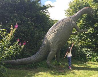 Dinosaur Park 26