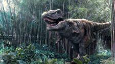 Dinosaur World Jurassic Park 25