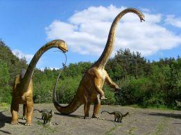 Dinosaur World Theme Park 24