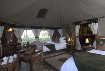Elephant Bedroom Camping