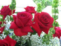 Beautiful Garden Rose Flower Ideas