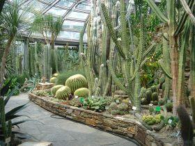 Cactus Botanical Garden House
