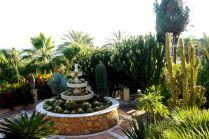 Most Beautiful Cactus Gardens