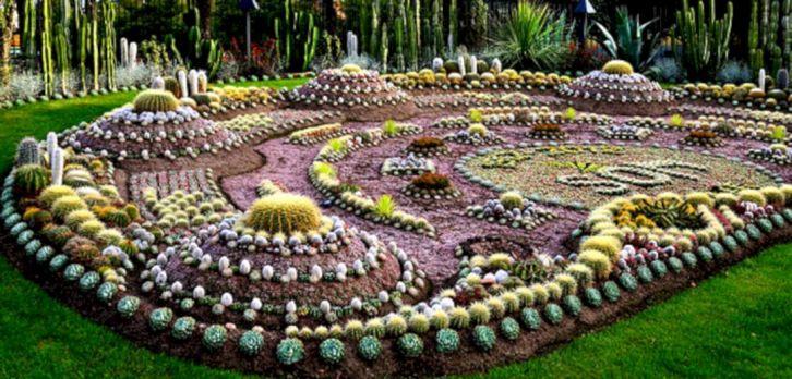 Outdoor Cactus Garden Idea