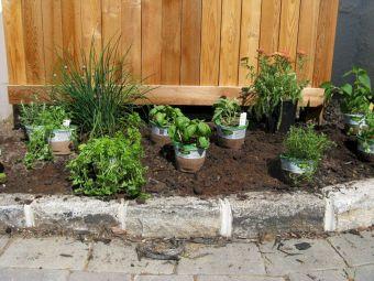 Simple Herb Garden Design Ideas