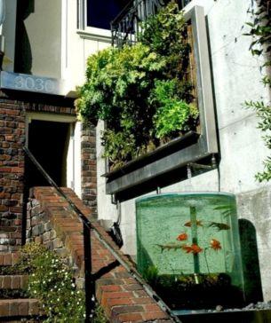 Aquarium Backyard Garden Ideas 9