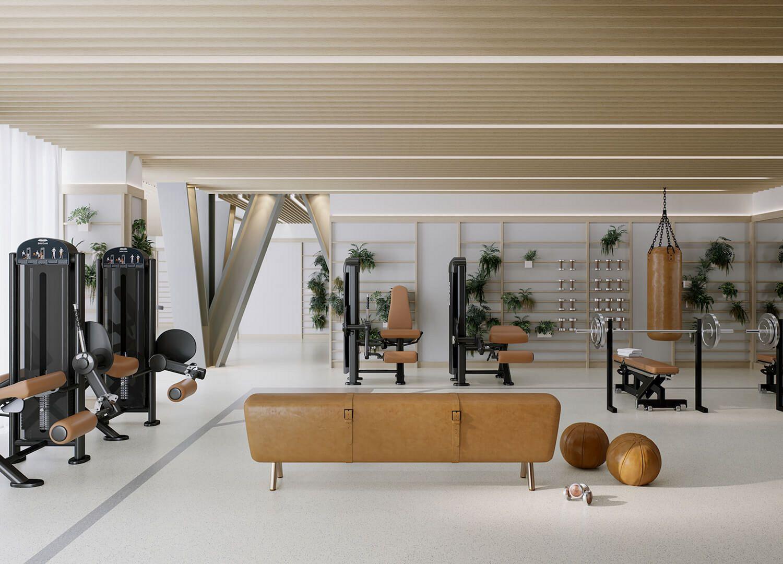 Basement Home Gym Design Ideas Decoredo