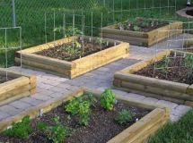 Bed Raised Backyard Vegetable Garden