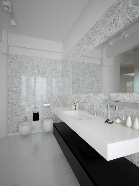 Black and White Modern Bathroom Design