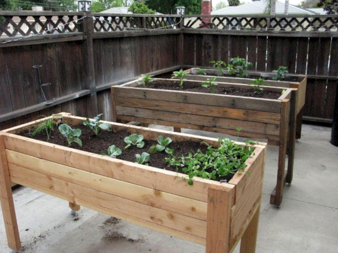 Cold Frame Gardening 2 – DECOREDO