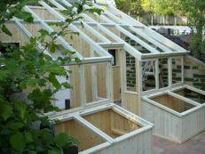 Cold Frame Gardening 7