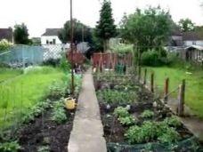 English Country Vegetable Garden