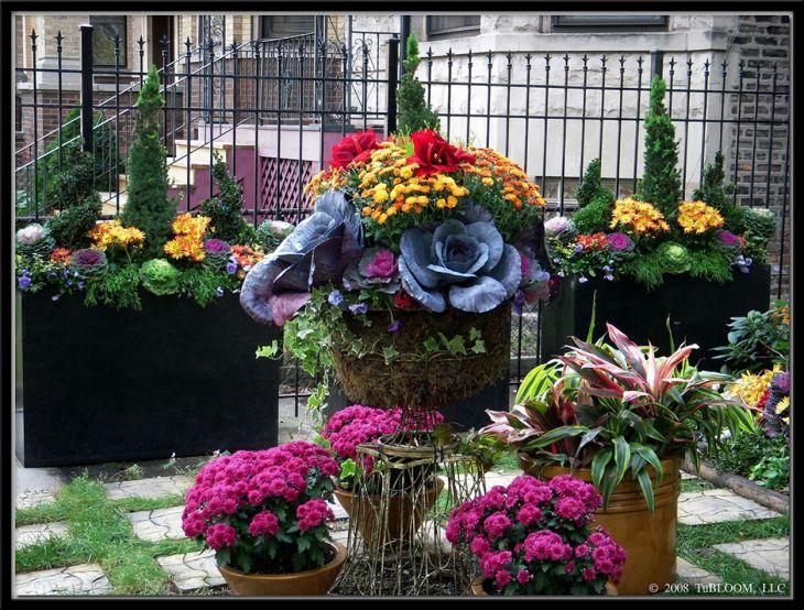 Fall Container Garden Designs