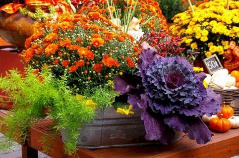 Fall Flower Container Garden Ideas