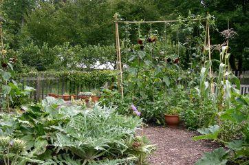 French Potager Garden Design