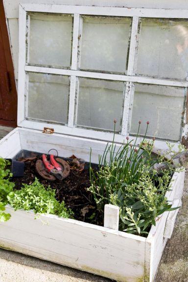 Greenhouse Raised Herb Gardens 7