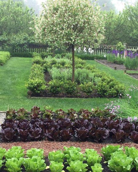 Potager Garden Blogs: 35+ Awesome Contemporary Garden Potager In Your Home