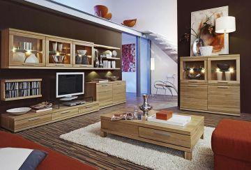 Modern Wooden Living Room Furnitures