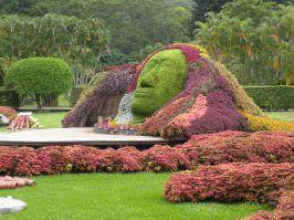 Bed Idea Flower Garden Design Ideas