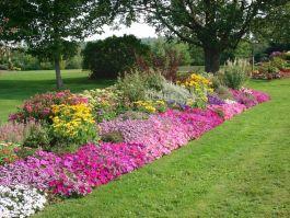 Bed Idea Flower Garden Designs