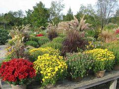 Beautiful Fall Garden Ideas For Awesome Fall Season 50