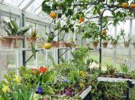 Winter Garden Design Ideas 181