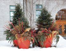 Winter Garden Design Ideas 21