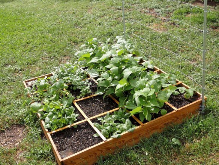 awesomr small vegetable garden ideas - Small Vegetable Garden Ideas